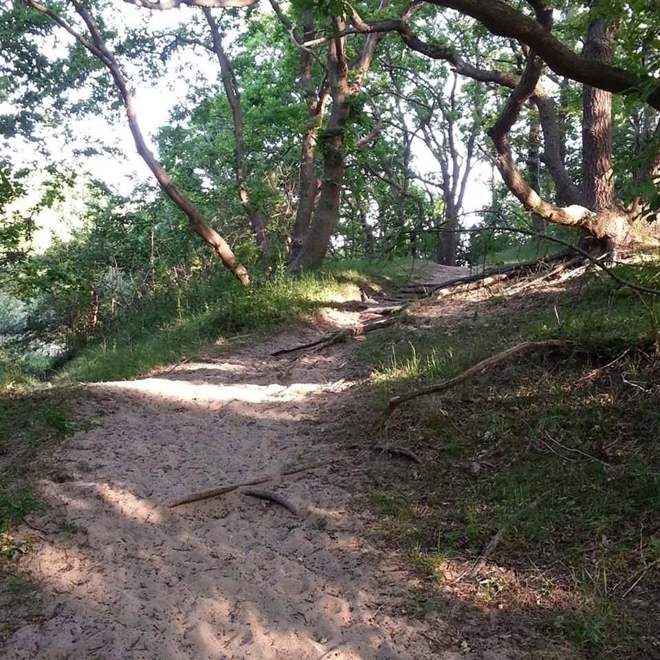 Trailrunnen met De Ochtendploeg